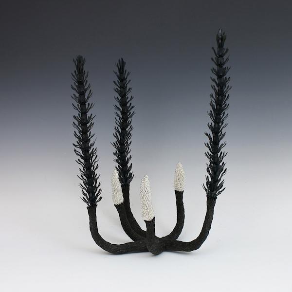 Junko Mori botany horsetail